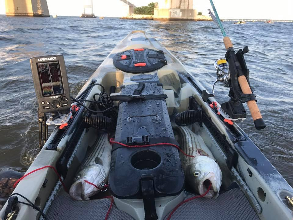 Chesapeake bay fishing report july 21st 2017 anglers for Chesapeake bay bridge fishing report
