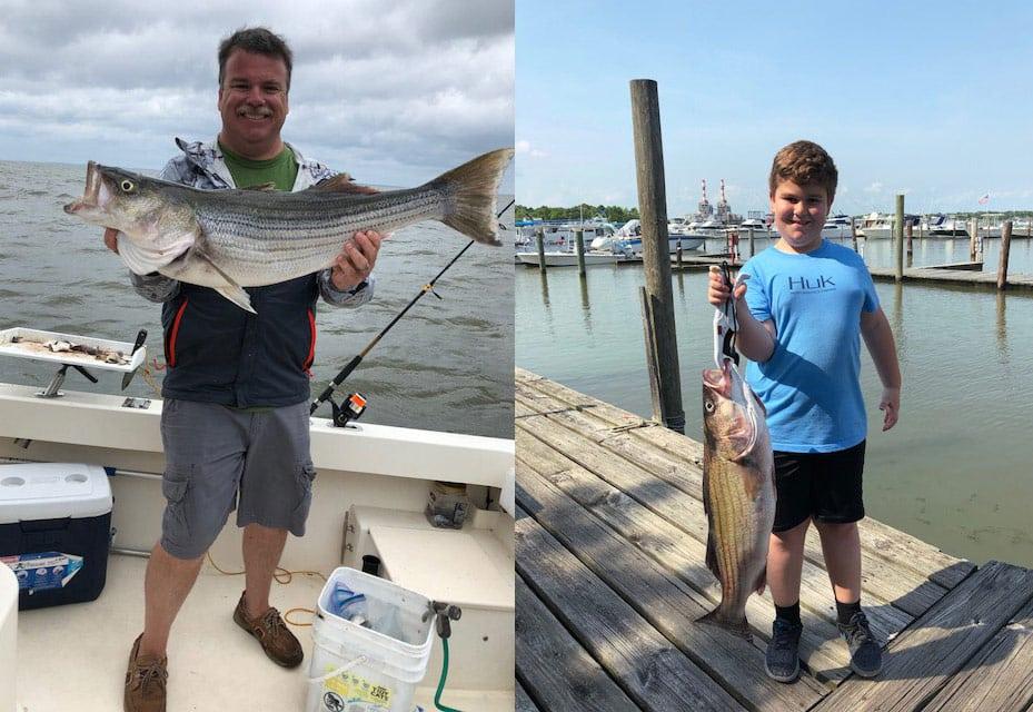 Chesapeake bay fishing report june 29th 2018 anglers for Chesapeake bay bridge fishing report