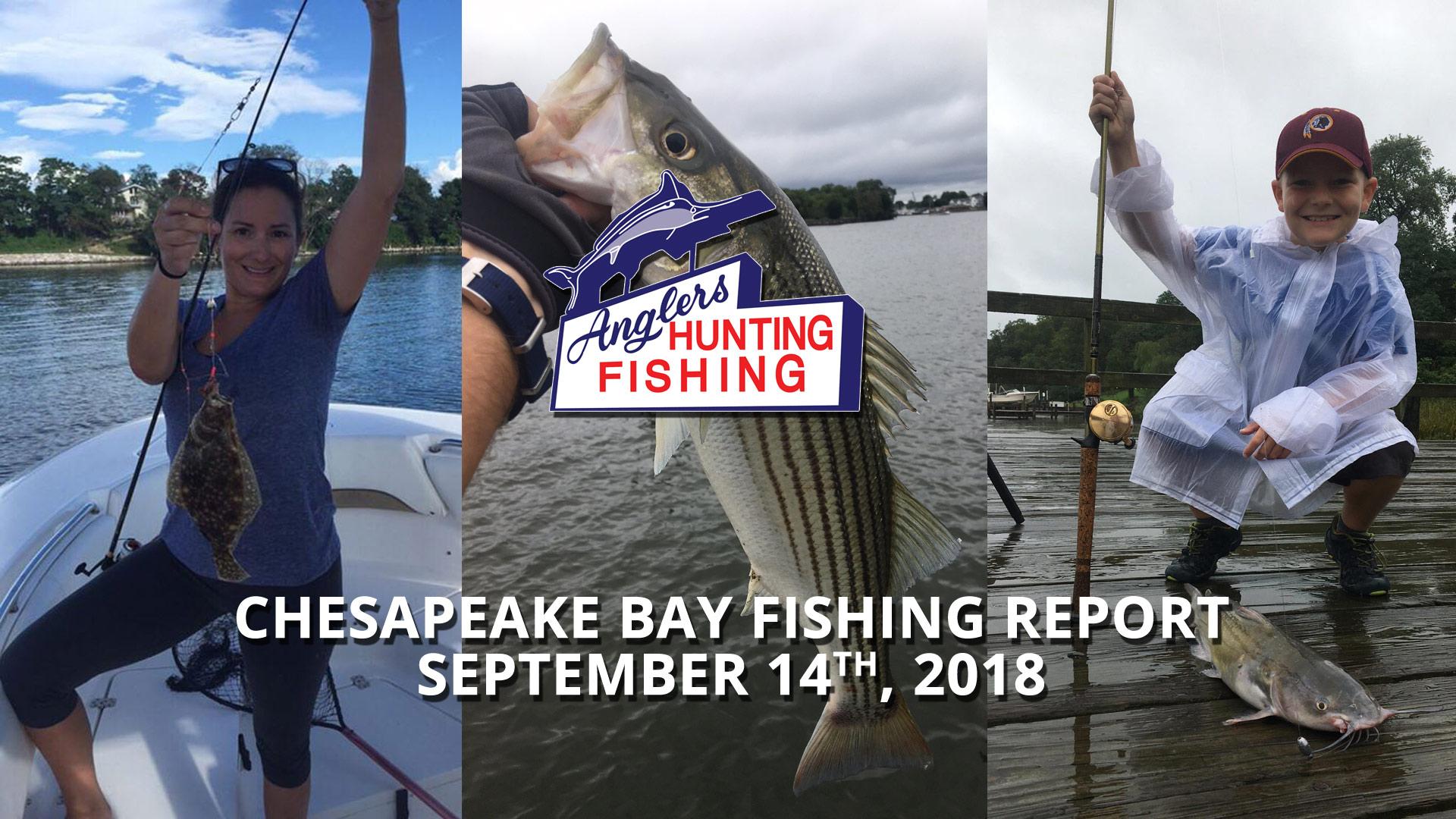 Chesapeake Bay Fishing Report - September 14th, 2018